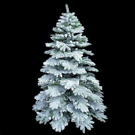 7ft alaskan pine real christmas tree covered in snow dust