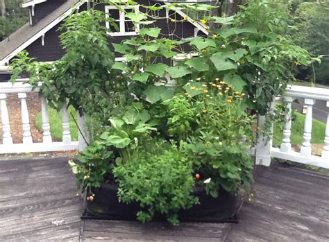 Fabric Raised Bed Vegetable Gardens Instant Organic Garden Deck Vegetable Garden