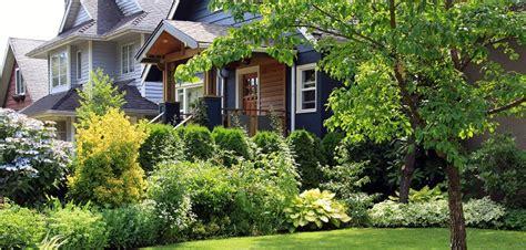 pflegeleichte pflanzen vorgarten vorgarten moderne und pflegeleichte highlights
