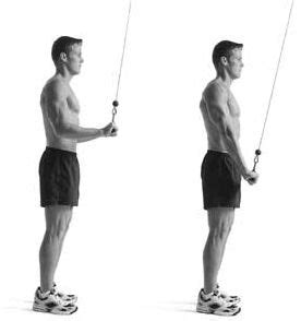 triceps workout (4) – triceps pushdown by munfitnessblog.com