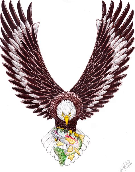 sea eagle tattoo designs designs eagle picture stylendesigns