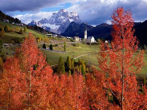 italy scenery red tree wallaper italy scenery red tree picture