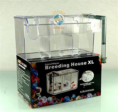 Best Box Arcylic Aquarium External Hang On Small Fish box separation box fish aquarium small fish sick