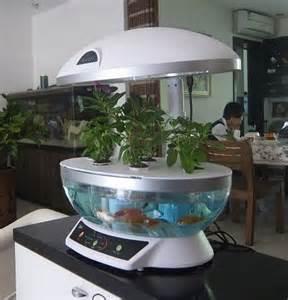 Plastic Fish Bowl Vase Window Gardens 12 Fresh Ideas For Growing Food Indoors