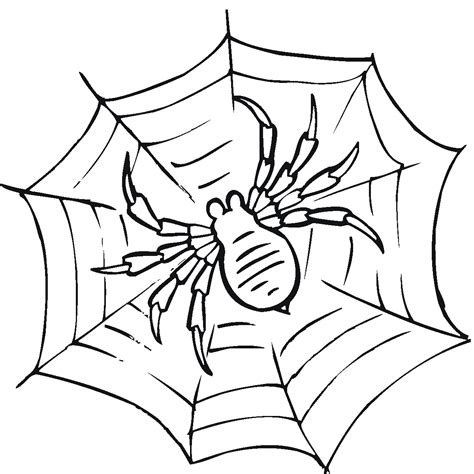 Printable Spider Coloring Pages free printable spider web coloring pages for