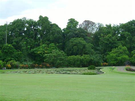 Bogor Botanical Gardens Bogor Botanical Gardens Junglekey In Image