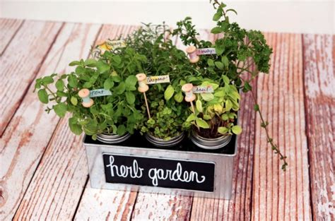 herb garden gift ideas 8 diy herb garden gifts diy gifts for foodies