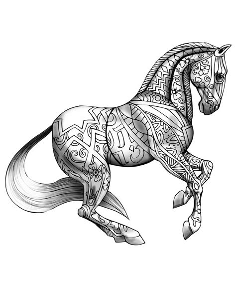 coloring pages for adults horses 1055 best images about adult coloring book on pinterest