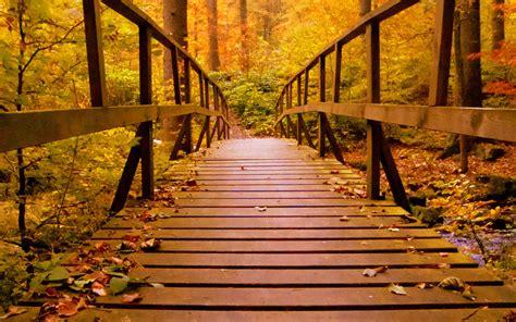 62 wallpaper autumn macbook air 62 wallpaper autumn macbook pro pic best wallpaper hd