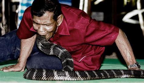 film dokumenter binatang buas foto persahabatan manusia dan binatang buas foto 5 dari