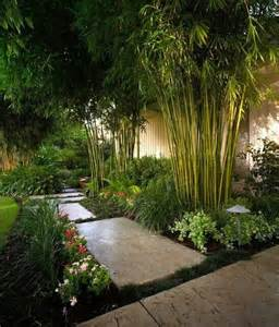 tropical backyard with an in ground barrier you could