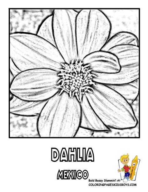 Free Mexican Flowers Coloring Pages