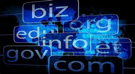 business idea buy  sell domain names  malaysia