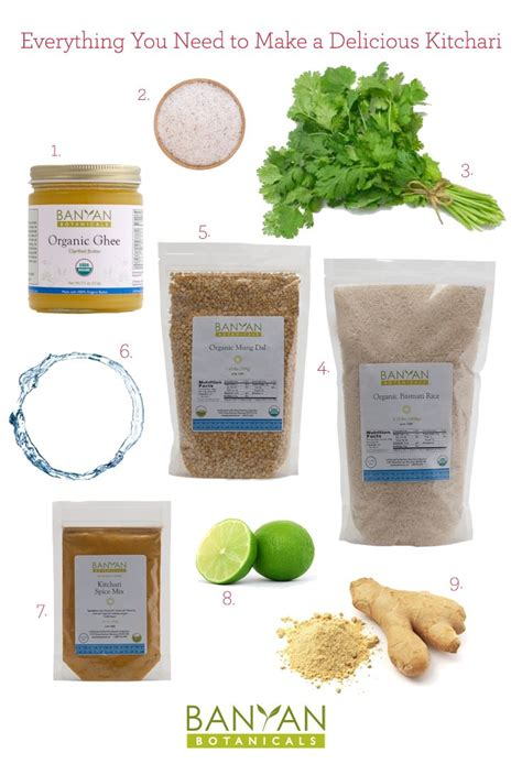 Organic Cilantro Detox by Everything You Need To Make A Delicious Kitchari 1