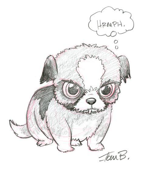 shih tzu drawing easy grumpy shih tzu by tombancroft on deviantart puppy sketch drawing illustration