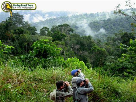 birding brazil tours about us