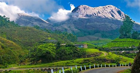 awesome     munnar   amazing vacation