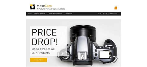 wix ecommerce templates the best wix ecommerce themes of 2015 dezzain