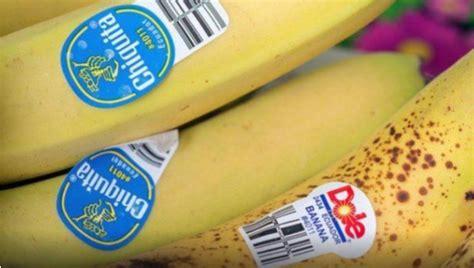Obst Aufkleber Kaufen by Warum Ihr Niemals Obst Kaufen Solltet Dessen Aufkleber