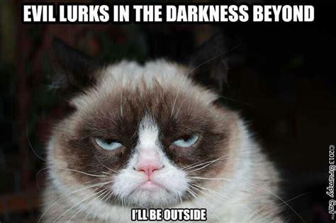 Tard The Grumpy Cat Meme - pin by susan k on tard the grumpy cat pinterest