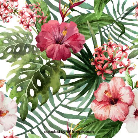 imagenes de flores exoticas para descargar pintados a mano flores tropicales descargar vectores gratis