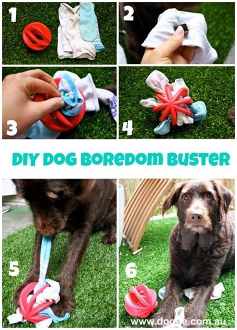 interactive puppy toys 37 toys made by diy pet owners