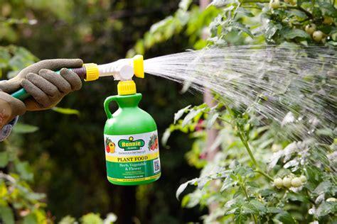 The Basics Of Fertilizing Bonnie Plants How To Fertilize Vegetable Garden