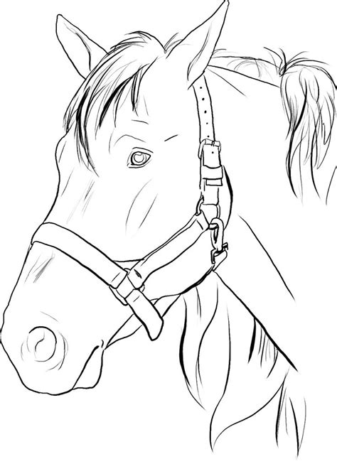 pattern horse drawing horse head coloring pages to print google search color