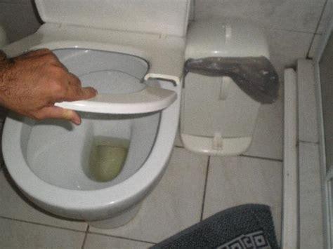 cracked glass toilet seat broken toilet seat picture of hotel tsilivi