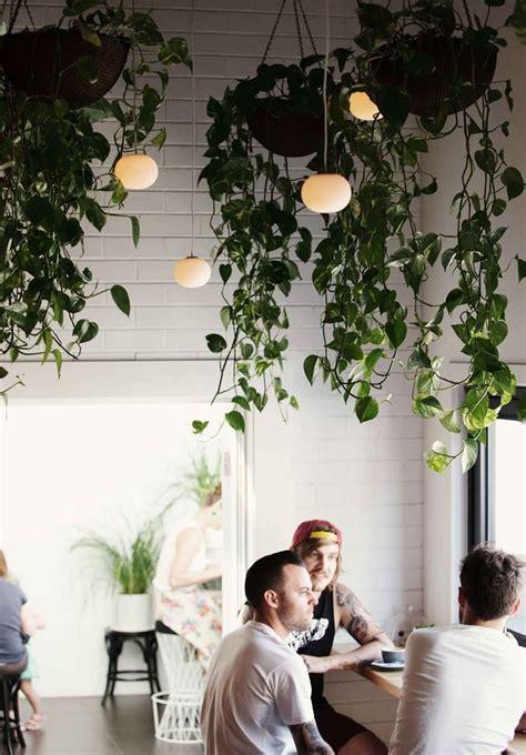 Indoor Hanging Garden Ideas 25 Indoor Garden Ideas Your No 1 Source Of Architecture And Interior Design News