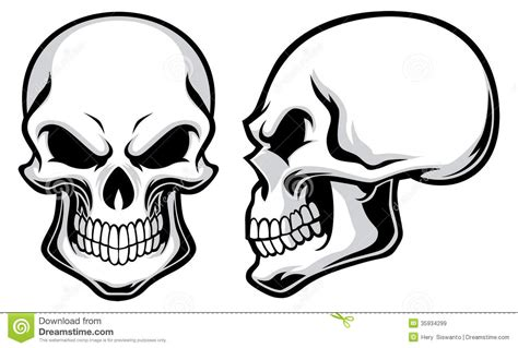 cartoon skulls stock vector illustration of creepy