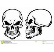 Cartoon Skulls Royalty Free Stock Images  Image 35934299