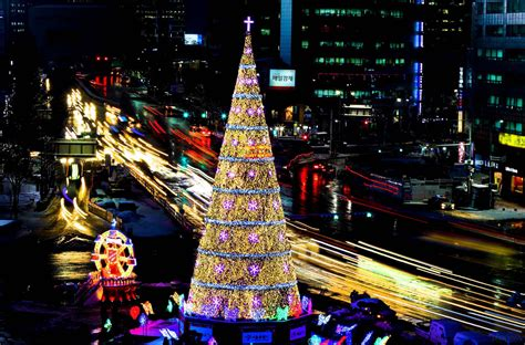 christmas tree in the 2014 olympic wallpapers and images