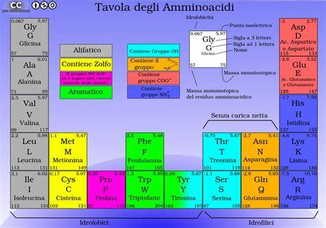 aminoacidi negli alimenti naturali il mito degli aminoacidi essenziali a cura prof