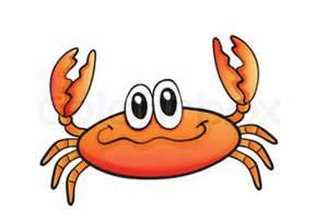 sea animal crab white background vector colourbox