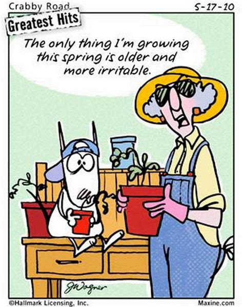 Gardening Jokes by 138 Best Images About Gardening Humor On