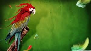 parrot wallpaper 1094178