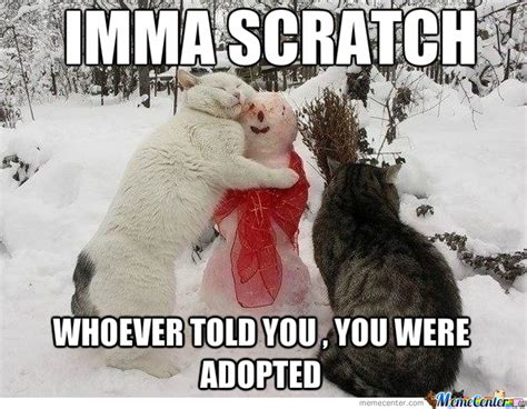 Adoption Meme - adoption by cuteasfuck meme center