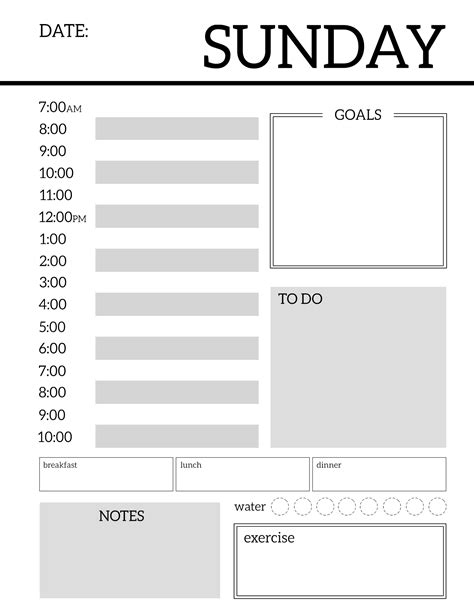 printable daily organizer templates daily planner printable template sheets paper trail design