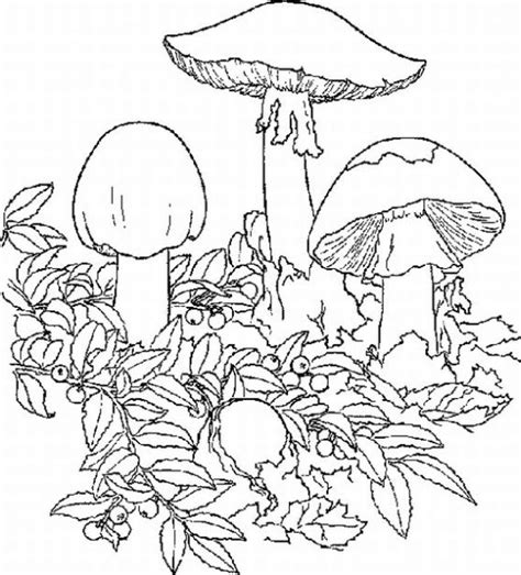 trippy coloring book for sale free psychedelic pictures