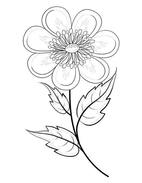 coloring pages for elderly x rated coloring pages pictures to pin on pinterest