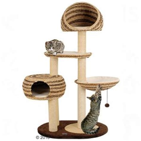 aidez nous à choisir l'arbre à chat de siska chats