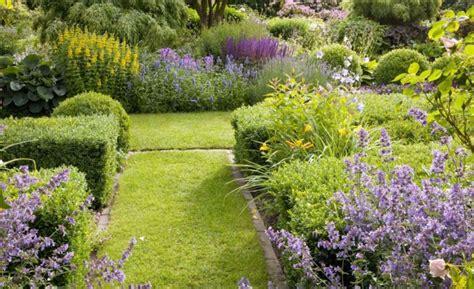 beste cottage garden pflanzen schnellwachsende hecken f 252 r individuelle gartengestaltung