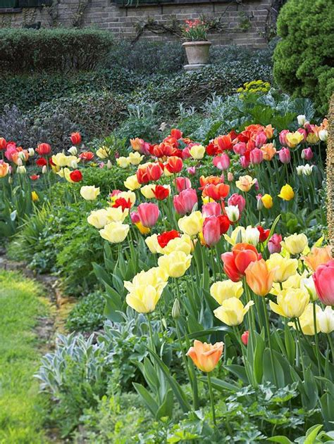Bulb Garden Ideas Beautiful Bulb Combinations Gardens Beautiful And