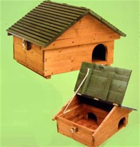 Hedgehog House Plans Hedgehog Houses On Hedgehog House Model House And Wildlife