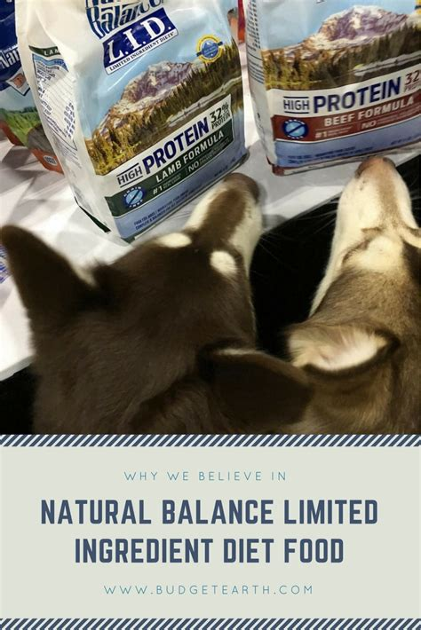 balance limited ingredient food why we believe in balance limited ingredient diet food blogpaws