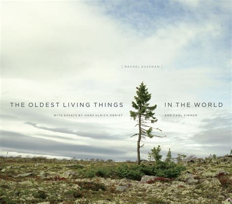 Whats The Time Mr Wolf Ebooke Book the oldest living things in the world sussman zimmer obrist