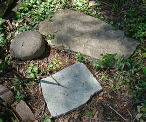 Buy Rocks For Garden Bug Finders Bugs In The Dirt Nature And Science Programs At Works