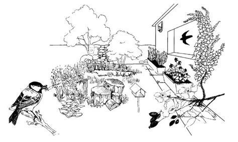 imagenes para colorear jardin 10 medidas a favor de la biodiversidad en los jardines