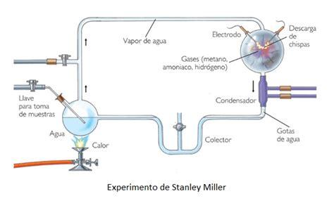 que es liquid layout el experimento de stanley miller trabajo valeria